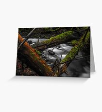Swift Current Greeting Card