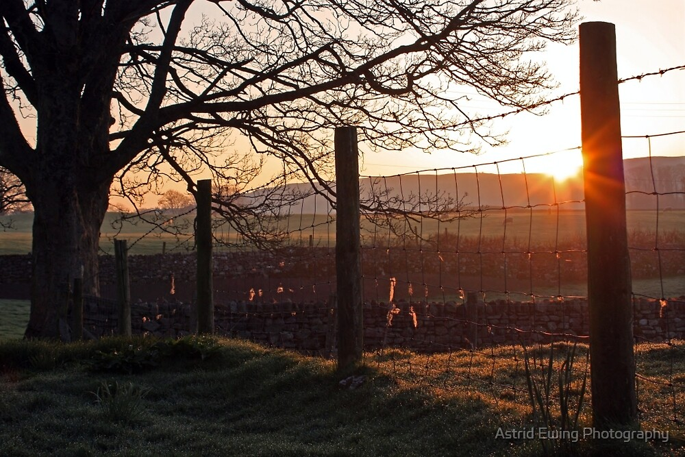 Spring Sunrise in Cumbria by Astrid Ewing Photography