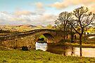 Weetwood Bridge by David Lewins