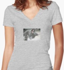 Close Up Of A Grey Kitten Women's Fitted V-Neck T-Shirt
