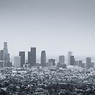 Downtown Los Angeles by William Fehr