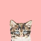Kitten cutest cat new adorable pet cat gift for cat lady funny illustration  by PetFriendly