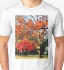 Autumn Sycamore Tree T-Shirt