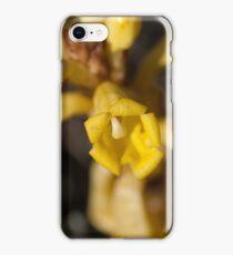 Cistanche Phelypaea iPhone Case/Skin