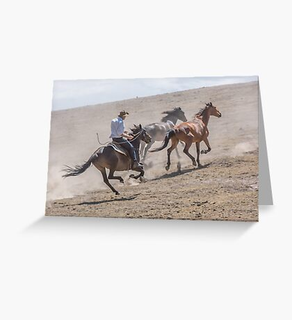 Chasing them up Greeting Card