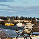 Bench with a View by Debbie  Roberts