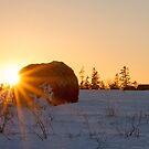 Hay Bale Eclipse by Debbie  Roberts