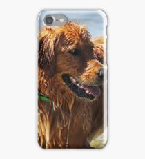 Wet Dog iPhone Case/Skin