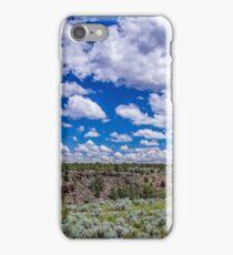 Big Sky and Sage Brush iPhone Case/Skin