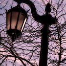 The Midnight Light by photograham