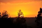 Sunset from the Mount Burnett Observatory by Mount Burnett Observatory