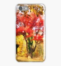 Red Autumn Sycamore iPhone Case/Skin