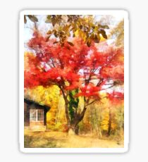 Red Autumn Sycamore Sticker