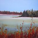 Winter in Island Lake Park  by bevmorgan