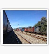 Seato sky Rail Yard- Sunny Sticker