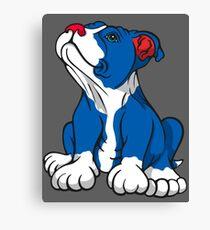 American Pit Bull Puppy  Canvas Print
