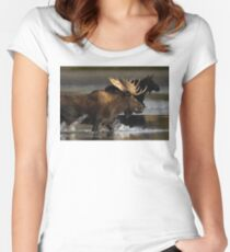 Splash Women's Fitted Scoop T-Shirt