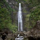 Hanakapiai Trail - Kauai by Michael Treloar