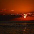 January Sanibel Sunset  by Karen Checca