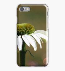 Echinacea  iPhone Case/Skin