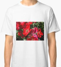 Bee on Roses, Queen Elizabeth Park Classic T-Shirt