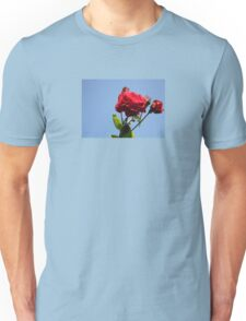 Red Roses with Blue Sky Background T-Shirt