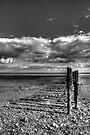 East Mersea Beach by Nigel Bangert