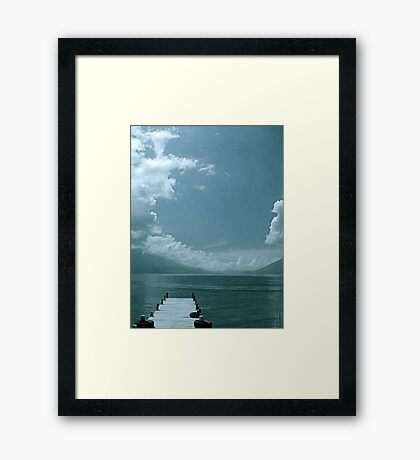 We just hang in there... Framed Print