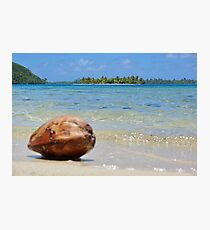 Tropical islet with blurred coconut in foreground Photographic Print