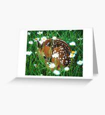 Fawn & Wildflowers Greeting Card