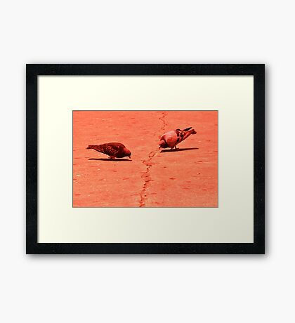 They knew they would have to work out their differences... Framed Print