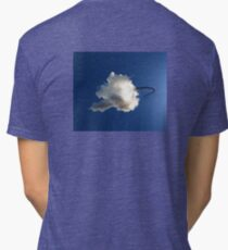 Dragon Hiding in a Cloud Tri-blend T-Shirt
