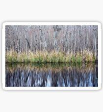 Swamp Reflection Sticker