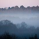 Dawn Mist by Sue Robinson