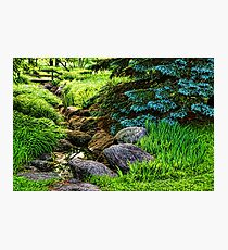 Impressions of Gardens - a Miniature Creek Through the Fresh Spring Green Photographic Print