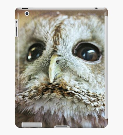 Cuddles Looking Up iPad Case/Skin