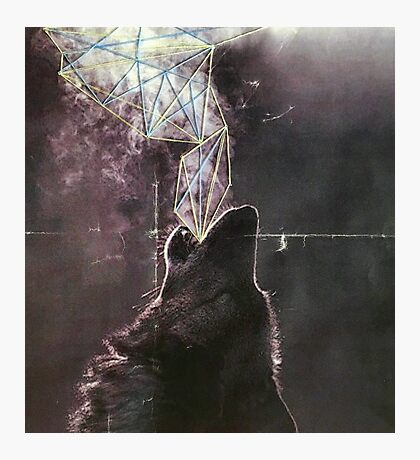 Wolves in the Night Photographic Print