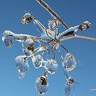 Frozen world 2 by Elena Skvortsova