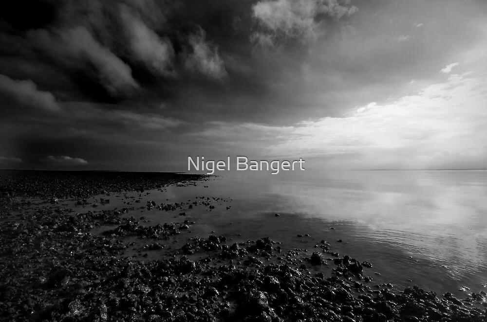 Mersea Beach  by Nigel Bangert