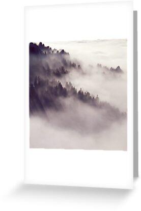 fog by SARiSON