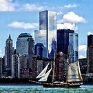 Schooner Seen From Liberty State Park by Susan Savad