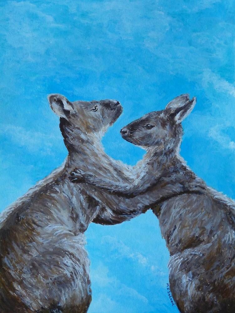 Kangaroo Island Kangaroos by Margaret Saheed