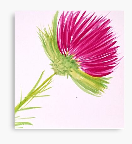 Brilliant Thistle Canvas Print
