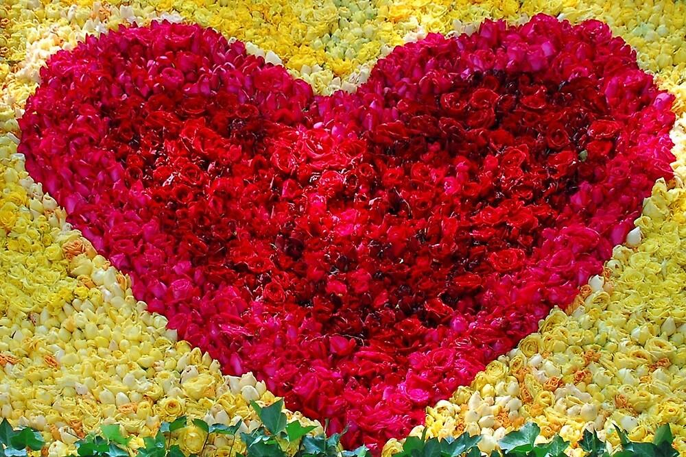 Valentine heart of roses by Arie Koene