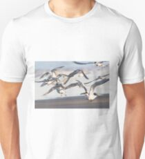 Sunset Tern Landing T-Shirt