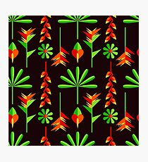 bright tropical picture Photographic Print