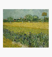 Vincent Van Gogh - Field with Flowers near Arles, 1888 Photographic Print
