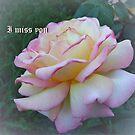 Miss you by Ana Belaj