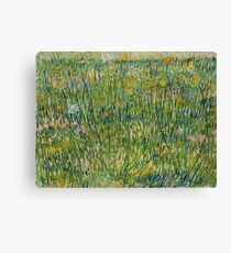 Vincent Van Gogh - Patch of grass Canvas Print