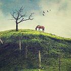 Horse on a Colombian Hillside by BobbiFox